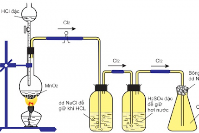 Đề cương ôn tập Hóa học 10 (Chương 5: Nhóm Halogen)